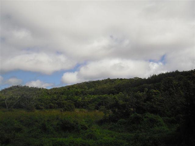 Fijian Farmland