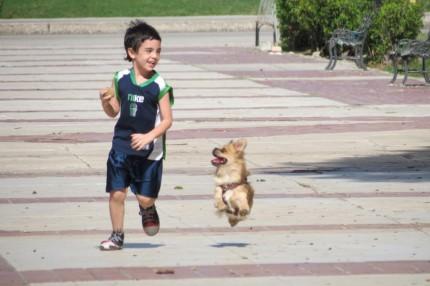 Boy and Dog in Cuba